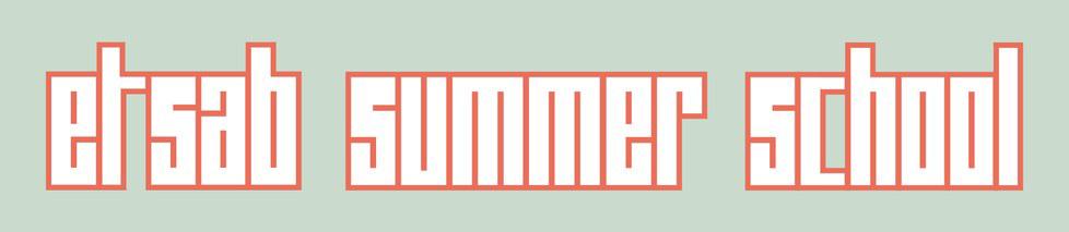 Cursos d'estiu, (open link in a new window)