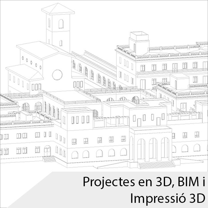 03_Projectes3D_Cat